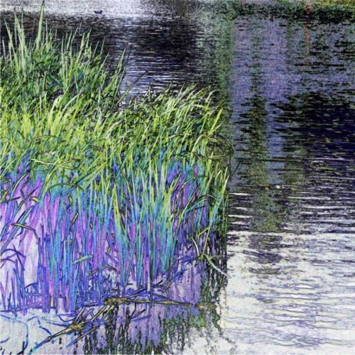 ELY-RIVER-OUSE-REEDS-GROWING-ALONG-EASY-ACCESS-TRAIL Shirley Overall